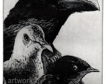 Raven artwork , Raven, crow,  Etching, . 5 inch x 7 inch 2013