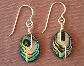 Paua Shell Wire-wrapped earrings