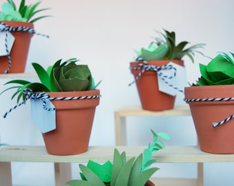 Paper plants etsy potted paper succulents fandeluxe Gallery
