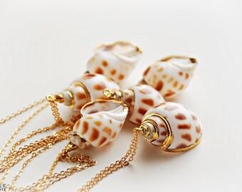 Coquillage, escargot collier en brun clair & blanc trempé dans l'or