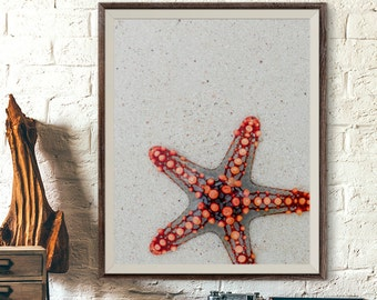 Starfish Photo, Starfish Print, Beach House Decor, Starfish Wall Art, Nautical Print, Nautical Decor, Ocean Art Printable, Beach Decor Art