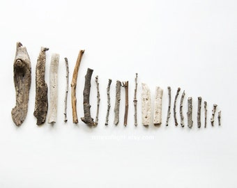 Rocks & Twigs N4 . 8x10