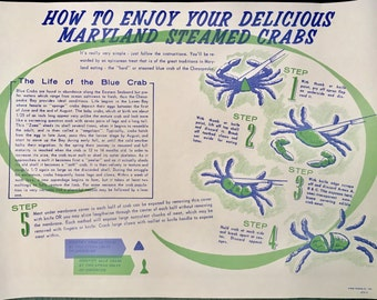 1960's Poster Maryland Blue Crab Picking Guide