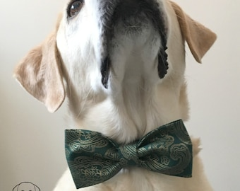 Paisley Green and Gold Bow Tie & Collar