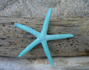 Mermaid Costume,Mermaid Hair Accessories,Beach Wedding,Starfish Hair Clip,Starfish Hair Accessories,Halloween Costume,Beach Hair Accessories