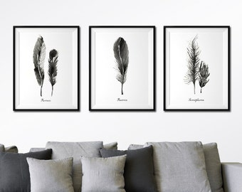 Feather Wall Art, Black Feather Watercolor Painting, Bedroom Wall Art, Feather Print Set of 3, Large Wall Art, Boho Decor, Feather Art Print