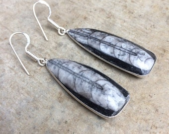 Bohemian dangle earrings in silver and the Morocco orthoceras. Orthoceras and silver bohemian earrings.