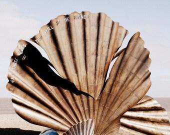 Seaside Photography - Shell Sculpture Fine Art Photograph - Aldeburgh Print - English Seaside - Ocean Decor - 8x12