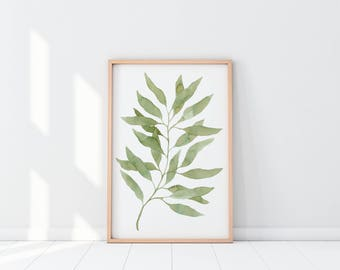 Watercolor Eucalyptus Leaves | Watercolor Print | Watercolor Botanicals Print | Watercolor Foliage  | Hanging | Home Decor | Wall Art