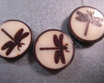 Batik Bone Dragonfly Coin Beads 3pcs