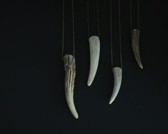 CIVAL Collective - Roe | Single Prong Antler Necklace | Nomad Pendant |Statement Necklace | Layering Pendant | Naturally Shed Antler