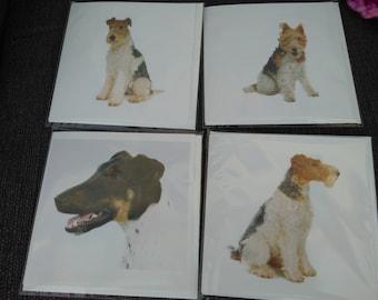 4 x Fox Terrier cards