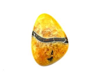 Simbircite ammonite with pyrite natural stone cabochon  50 х 35 х 6 mm
