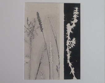 Small original fine art botanical monoprint Modern print on cream paper Influenced by vintage Japanese art Summer meadow grasses