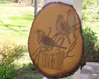 Three Sparrows On Tree Woodburning Pyrography