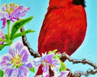 Cardinal in Cherry Tree