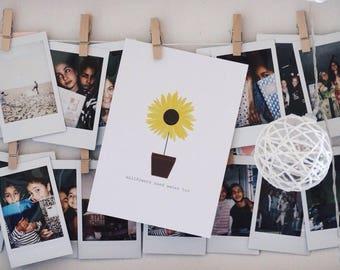 postcard wallflowers need water too