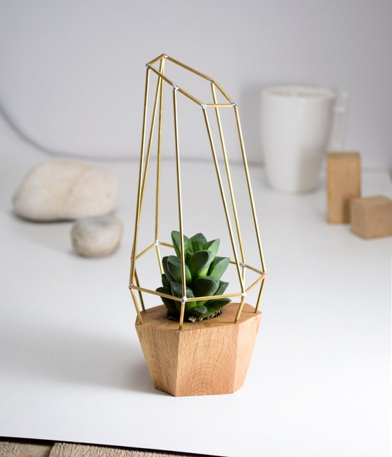 Modern Faceted Geometric Planter for Air Plant Succulent