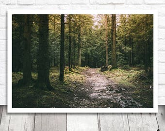 Dark Forest Print, Mysterious Forest Wall Art, Forest Path Photo Print, Digital Print, Forest Printable Wall Art, Nature Photography Decor