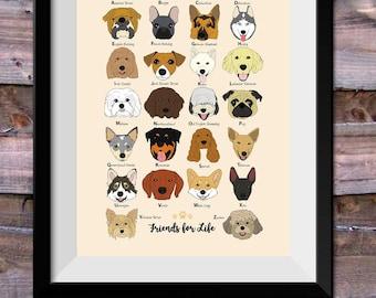 Dog Poster, Dog Breeds Print, Alphabet Poster, Animal Poster, Dog Illustration, Wall Art, Nursery Wall Art, Dog Portrait, Pet Art, Size A3