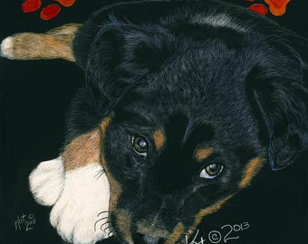 English Shepherd Puppy scratchart print -Lucy