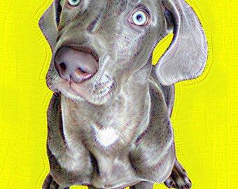 Weimaraner wall art, dog printable wall art, Weimaraner print, dog photograph