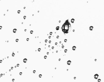 Black and White Dew Drops in a Spider's Web Reflecting straight lines - Another World - Photographic Art by Sarah McTernen