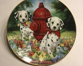 "Dalmatian Collector Plate ""Please Don't Pick the Flowers"""