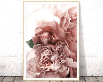 Blush Pink, Roses Print, Boho Floral Wall Art, Above Bed Art, Digital Print, Floral Poster, Bridesmaid Printable Gift, Modern Photography