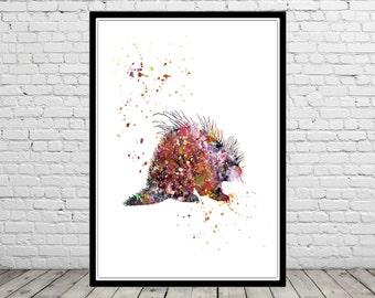 Porcupine, Porcupine print, watercolor Porcupine, Porcupine print, watercolor art print, animal print, home decor, animal art (1543b)