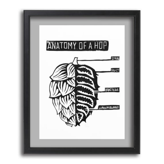Anatomy of a Hop