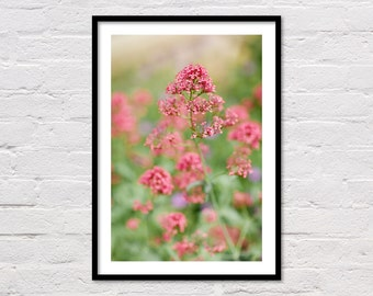 Wildflowers Print, Floral Printable, Pink Wall Art, Pink & Green, Boho Decor, Flower Art Prints, Landscape Photography, Digital Download