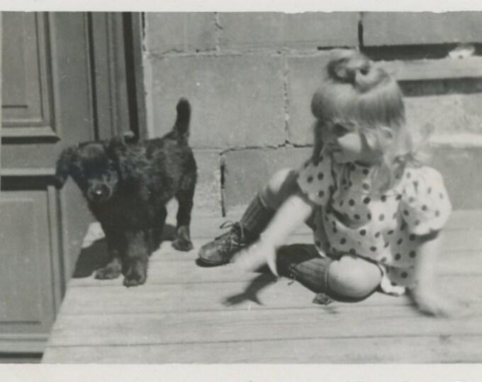 Vintage Snapshot Photo: Little Girl & Puppy [86688]