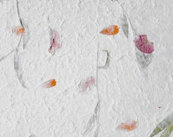 Flower pressing paper choice image flower decoration ideas flower pressed paper acurnamedia flower pressed paper mightylinksfo mightylinksfo