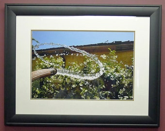 Custom Framed Photograph, Life in Motion, Stillframe