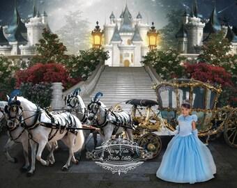 Princess To The Ball digital photography backdrop
