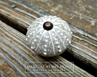 Ceramic Drawer Knobs | Nautical Cabinet Knobs | Coastal Cottage Knob | Glass Drawer Knobs | Coastal Decor | Dresser Knobs | Dresser Hardware