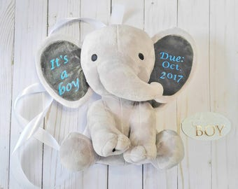 Preganancy announcement - new baby gift - gift for new grandparents - new baby announcement - gender reveal - big brother gift - boy baby