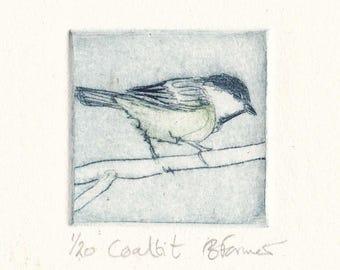 Coal Tit, Original Dry Point Etching, European Native Bird, Miniprint