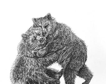 Bear Hug Pencil Drawing