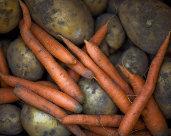 Organic Carrots and Potatoes