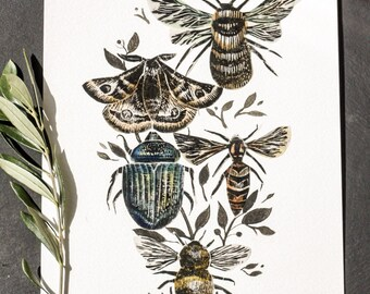 Insect collage 5