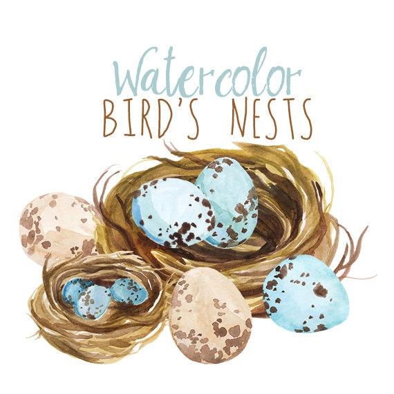 Watercolor Spring Clipart Bird's Nest Easter Clip Art