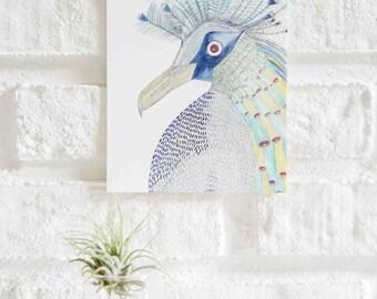 Bird Illustration Postcard