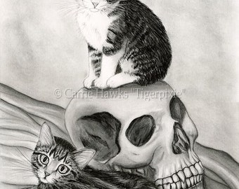 Cat Drawing Witch's Cat Art Tabby Kittens Cats Vampire Skull Gothic Fantasy Cat Art Print 5x7 Cat Lovers Art