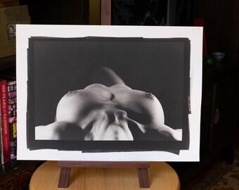 Nude Platinum/Palladium Print: Nikola No. 70730 8x12