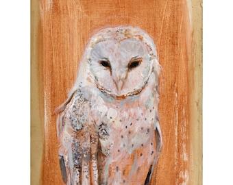 Barn Owl II Print