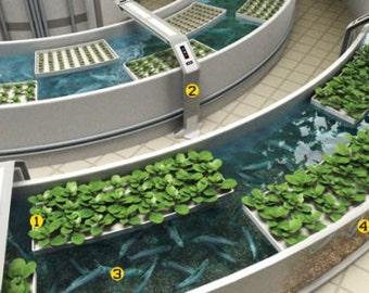 Aquaponics CD Homesteading Aquaculture Soilless Growth Raising Plants Fish 80 bks
