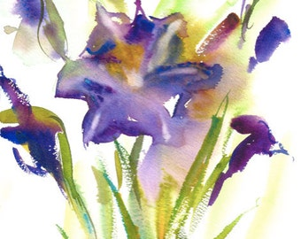 Fresh Pick No.317, limited edition of 50 fine art giclee prints from my original watercolor
