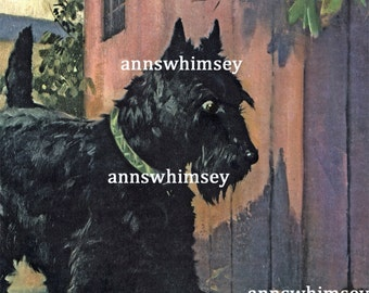 "Dog Art Print RESTORED Antique Art ""EEK A Mouse"", Scottish Terrier Makes Discovery  #130"